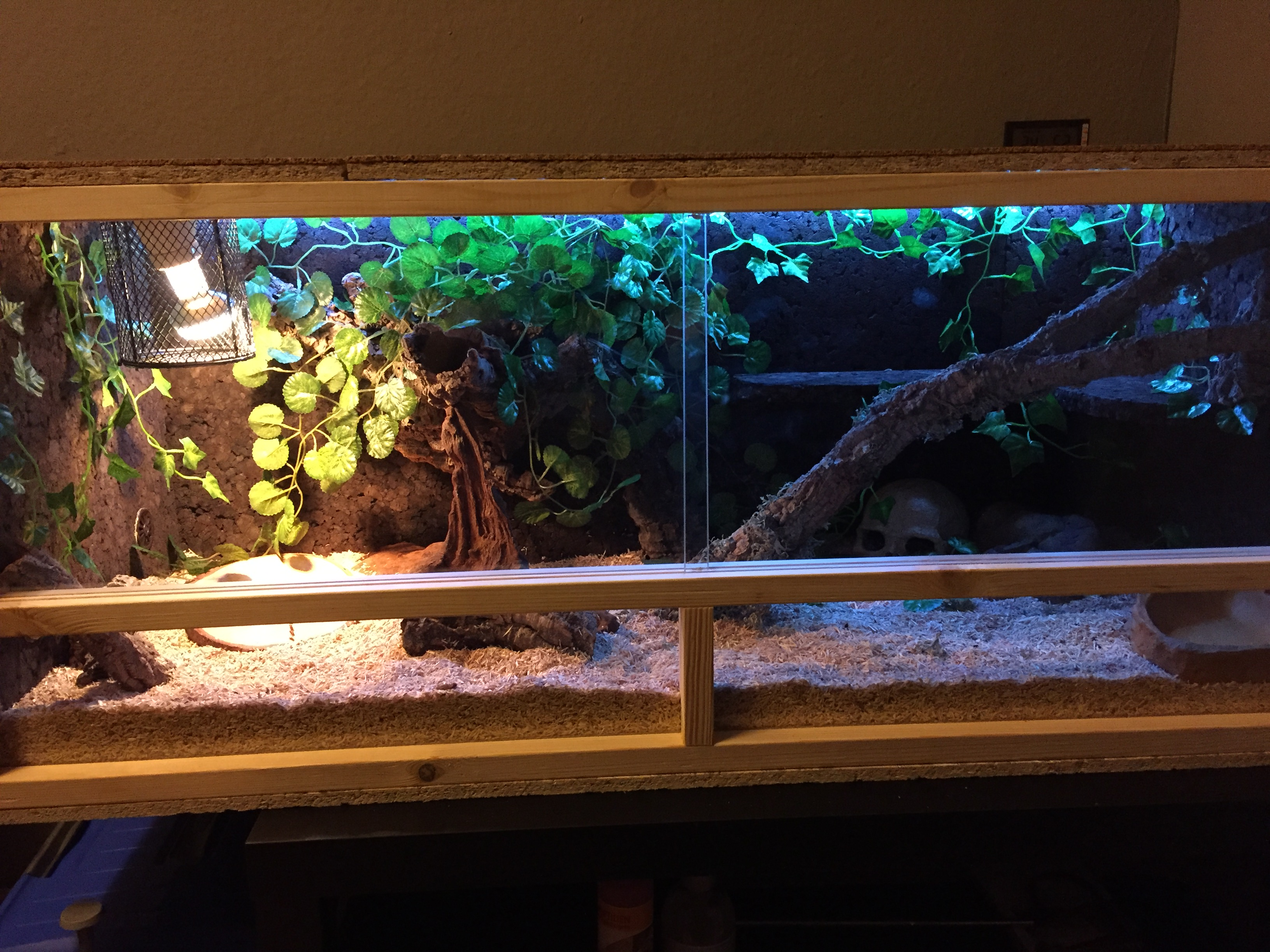 Mein Terrarium 2